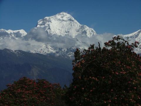 Dhaulagiri 8167m