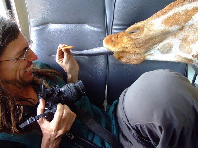 Giraffe likes Don
