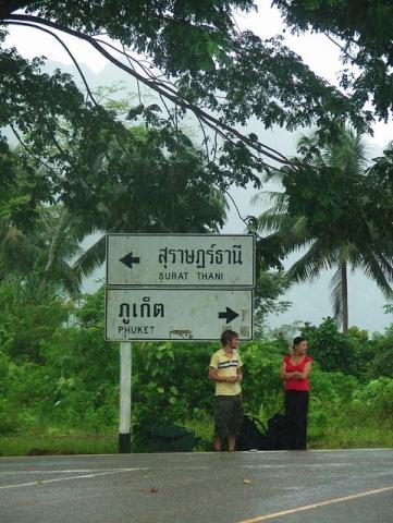 Phuket... or Surat Thani...