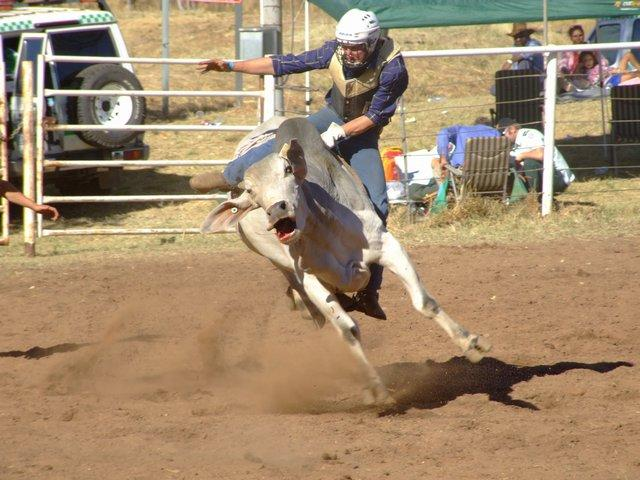 kununnura rodeo