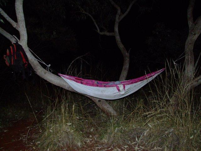 a night in the hammock