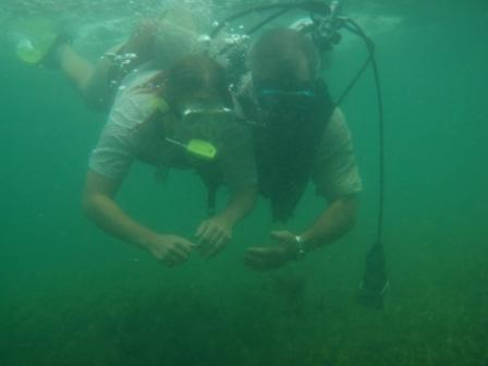 a go at scuba
