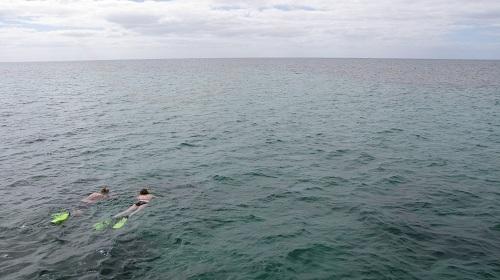 Mum & Dad snorkelling