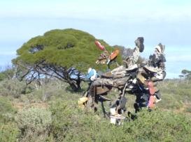 the shoe-tree