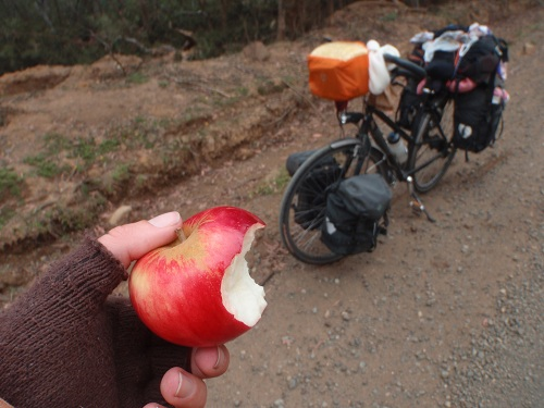 a given apple
