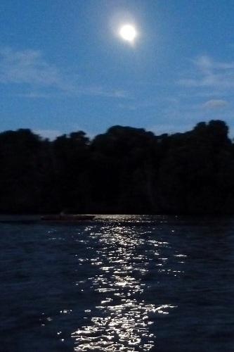 Night-Kayak