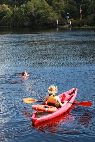 Swimming accross the Pieman