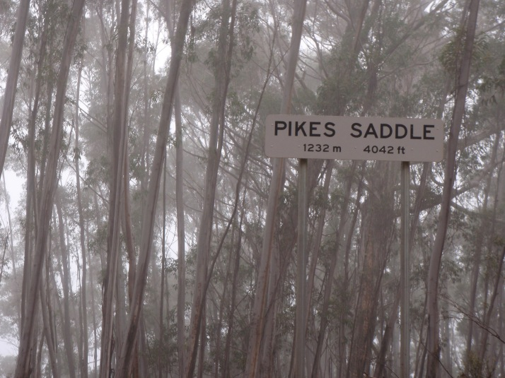 Pikes Saddle