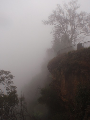 mist in the blue mountains