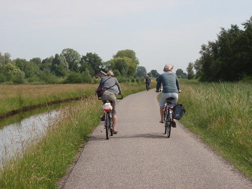 A family-bike-ride