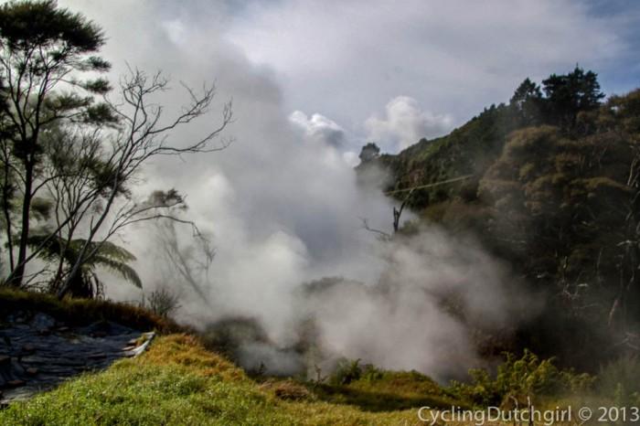 Boiling Creek