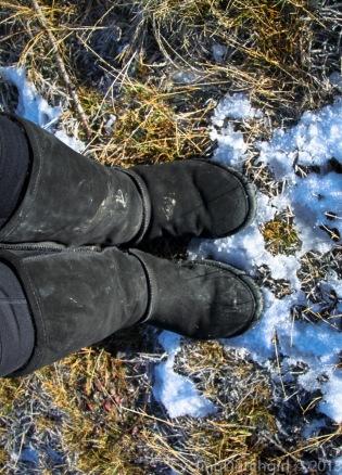 Gotta love 'em Boots
