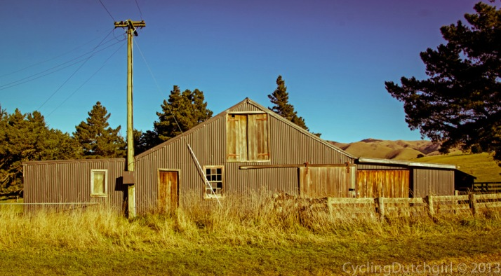 the old wool shed