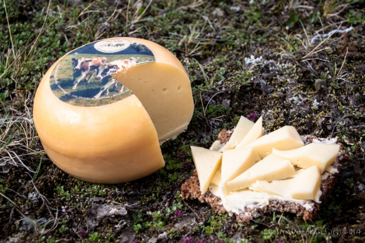 Cheese my grandma gave me