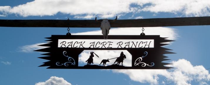a proper ranch