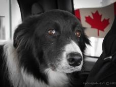 yup, still Canada